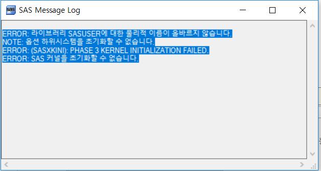 sas정보처기화 오류